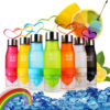 New Xmas Gift 650ml My Water Bottle plastic Fruit infusion bottle Infuser Drink Outdoor Sports Juice 1